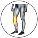 Approccio neuro-muscolo-articolare alle problematiche dell'arto inferiore